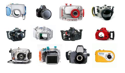Essential Tips For Beginner Underwater Photography
