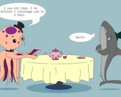 Shark Vs Octopus…. You'll be suprised